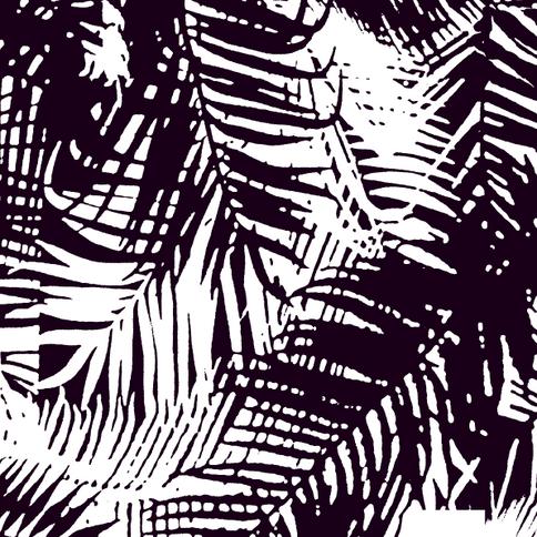 Sol-Palm-C01.png