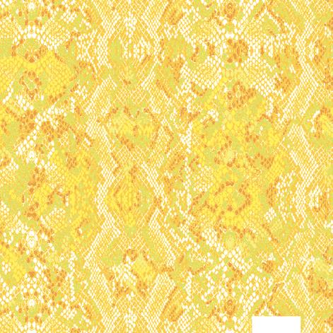 Sum-Barbès-C01.png