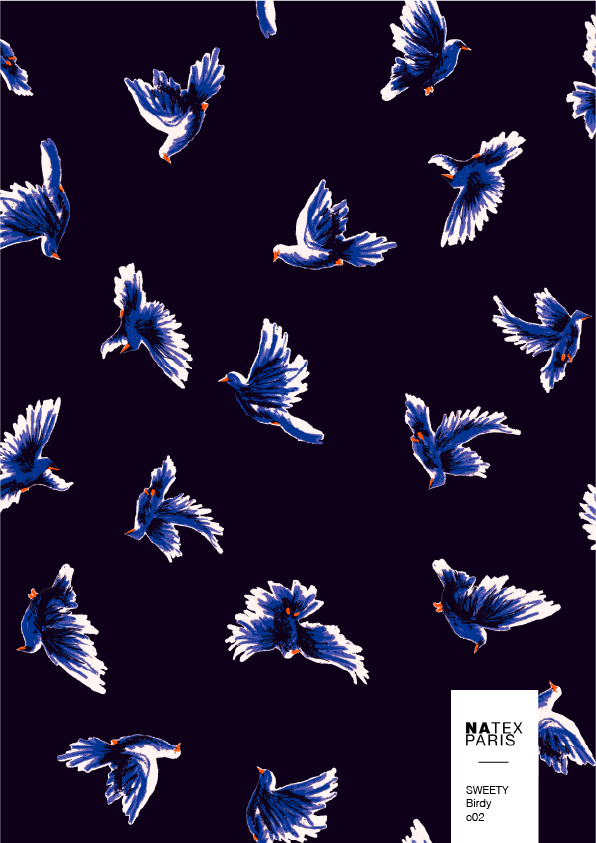 Sweety-Birdy-c02