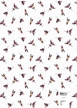 Sweety-Fly-c01
