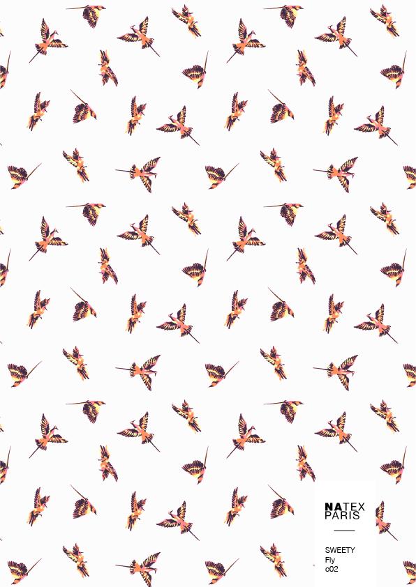Sweety-Fly-c02