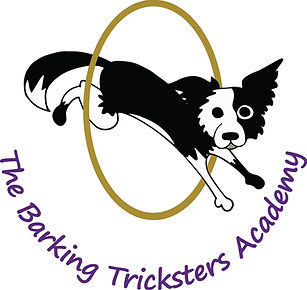 Barking Tricksters.jpg