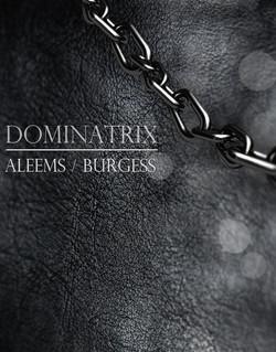dominatrix-510x652.jpg