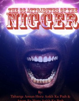 The 66 Attributes of the Nigger