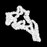 pferd[91]-weiss-Startseite.png