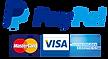 Pago seguro con tarjeta sistema paypal