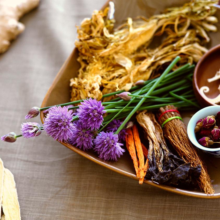 Tea Tastes and Tinctures: Healing Herbs of the African Diaspora