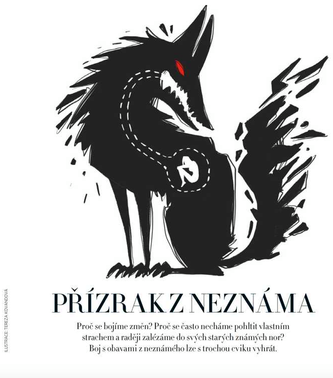 spolupráce na článku pro Harper's Bazaar