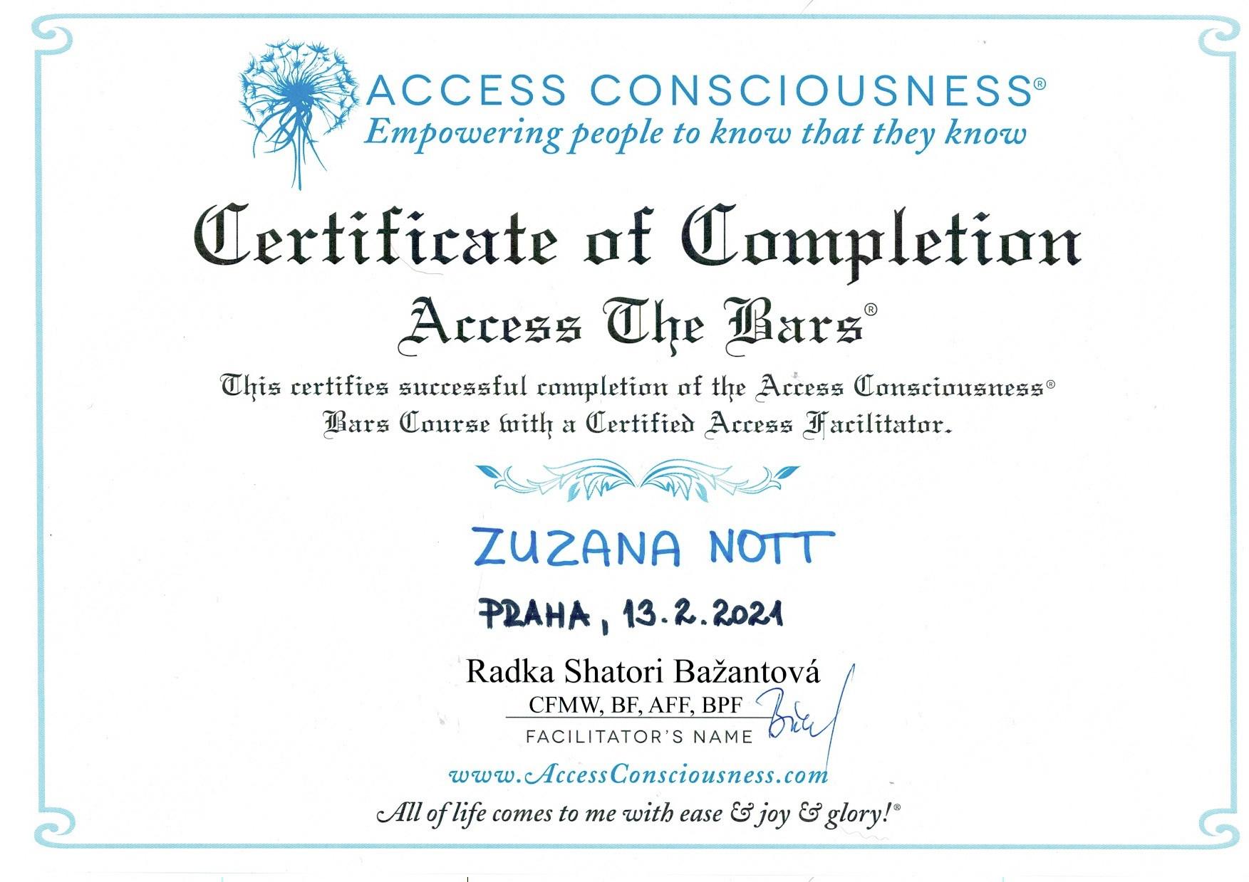 Access_Bars2.jpeg