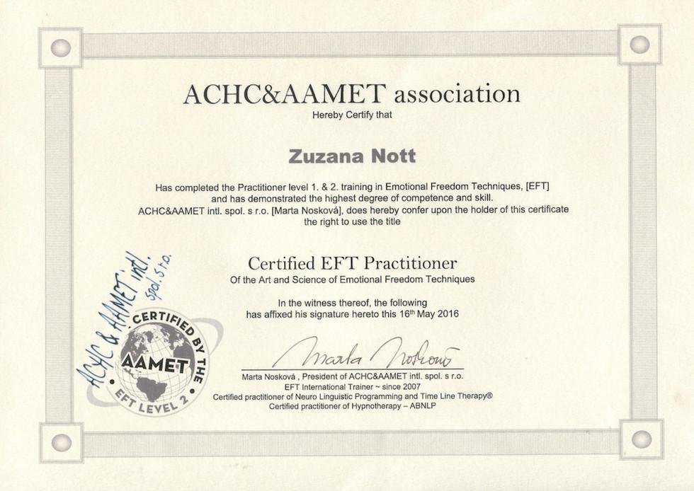 ZN-EFT_lowres.jpg