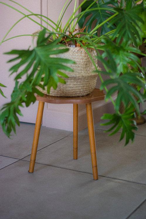 Vintage plantentafeltje