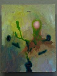 Cactaceae-IX