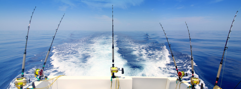 Sports Fishing Charters