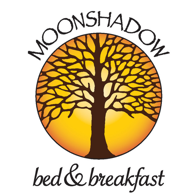 MoonShadow-Logo-Clr-Versions-02.jpg