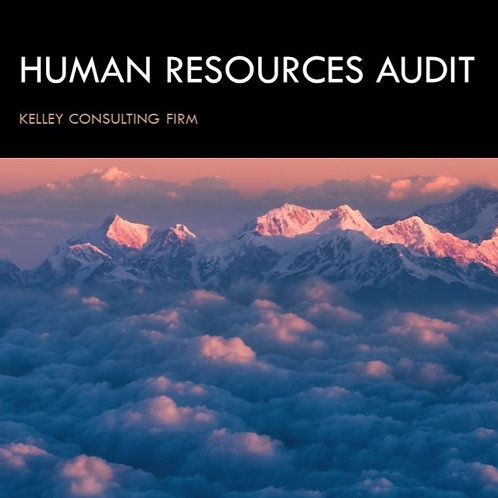 Human Resources Audit Guide