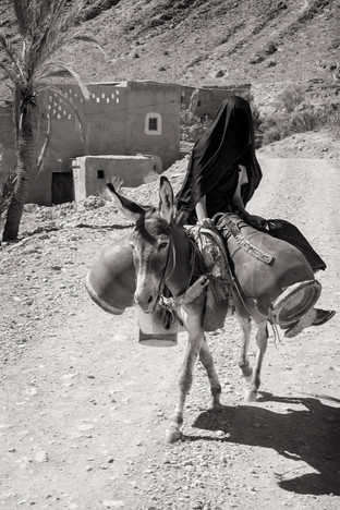 Lady on a donkey