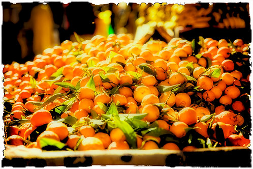oranges morocco fruit food produce fine art print limited edition photography suzanne porter sun travel moroccan scene