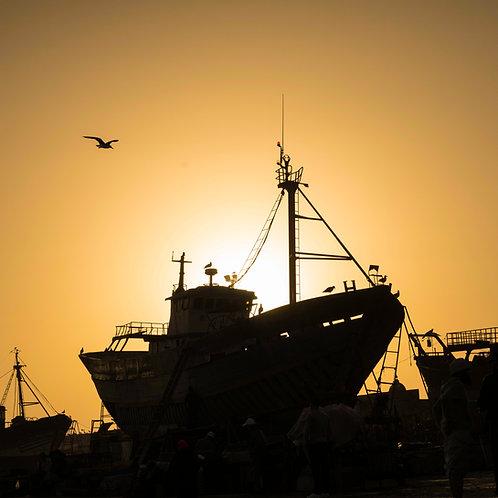 Essaouira Silhouette