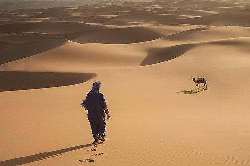 desert morocco fineart art prints erg chubby merzouga africa african photography suzanne porter