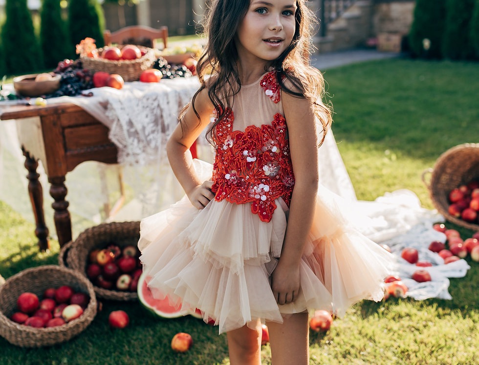 beige girls tutu dress with red