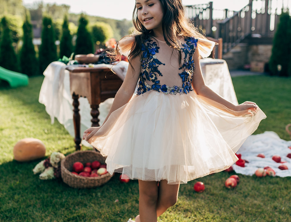 beige blue tutu dress