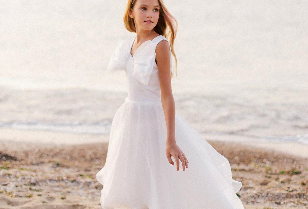2050 Pollardi | Asymmetric Chiffon Dress