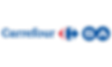 carrefour _logo.png