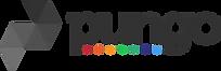 pungo_logo2.webp