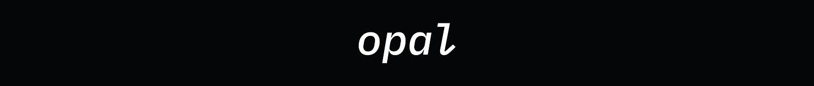 Kopf_opal.jpg