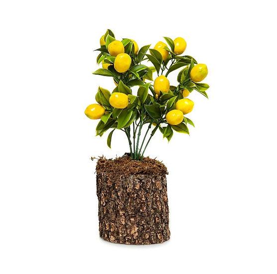 Nature_Yapay Limon Ağacı