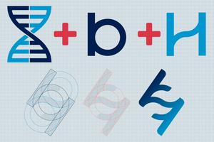 Elementos de construção da marca BiomeHub