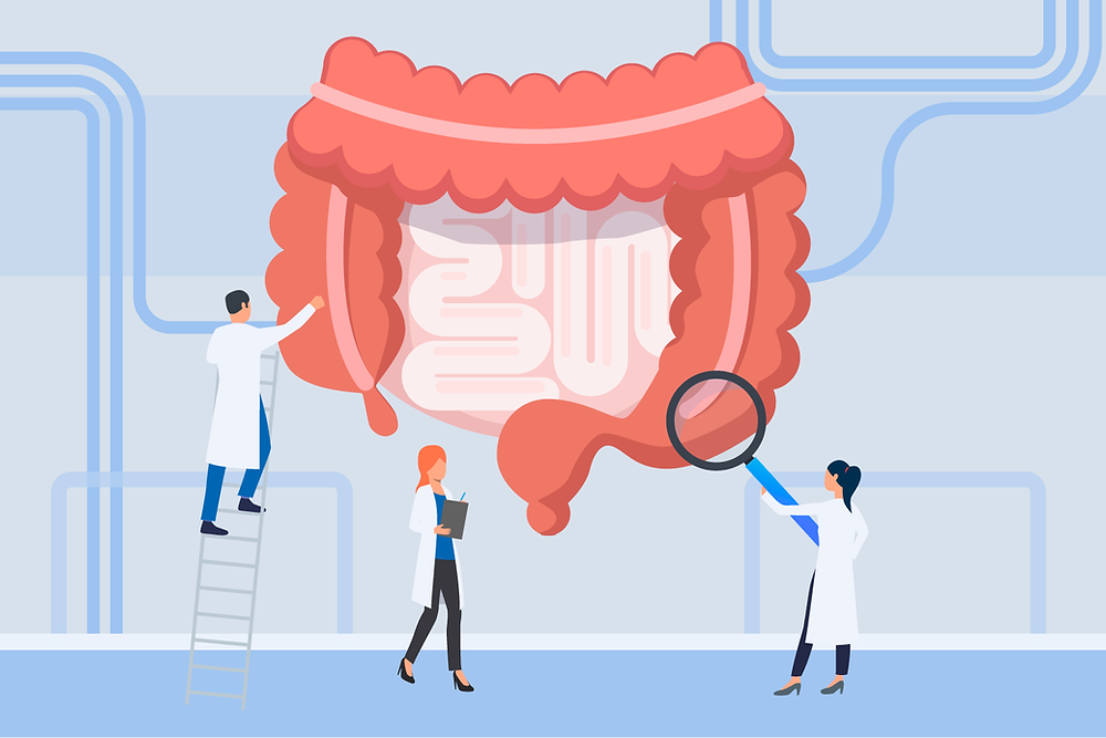Desenho de um intestino gigante sen do examinado por três cientistas