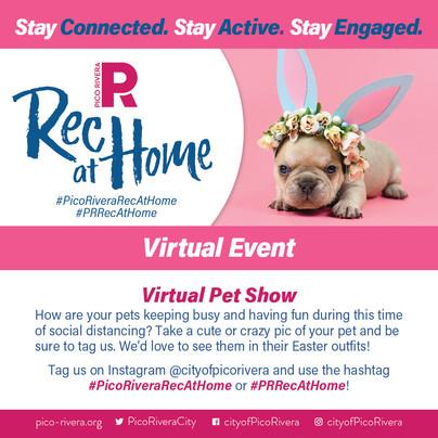VirtualRec_4.11.20-PetShow-IG-01.jpg