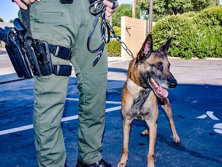 Elite Narcotics & Bomb Detection Dog Unit