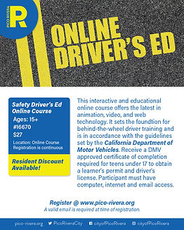 Online Drivers Ed Online Flyer-01.jpg