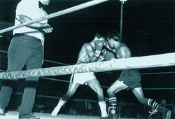 Boxing Match at the Sports Arena