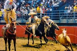 Charreada (Mexican Rodeo)
