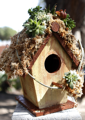 Large Angled birdhouse