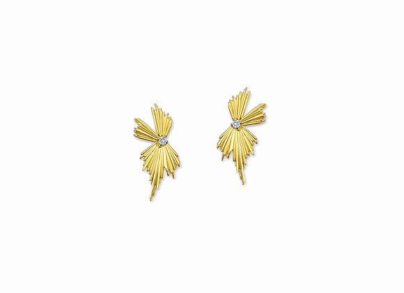E5E Evolution earrings