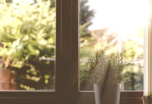 green leafed plant in front of window in shallow focus photography_edited.jpg