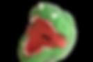 恐竜画像1.png