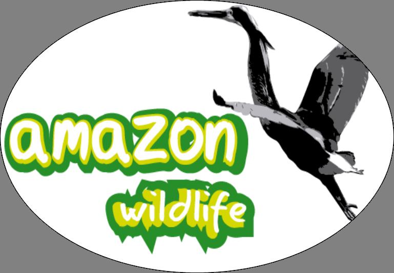 (c) Amazonwildlife.ec