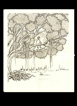 Boy-on-the-tree-TGITT