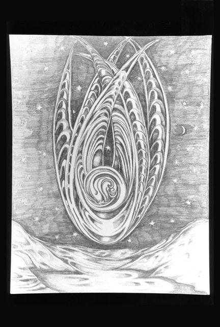 drawings 60