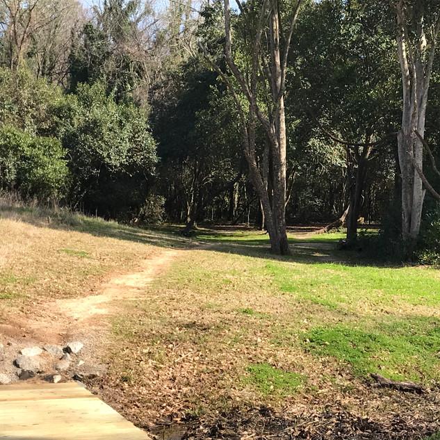 Owens Field Hole 2