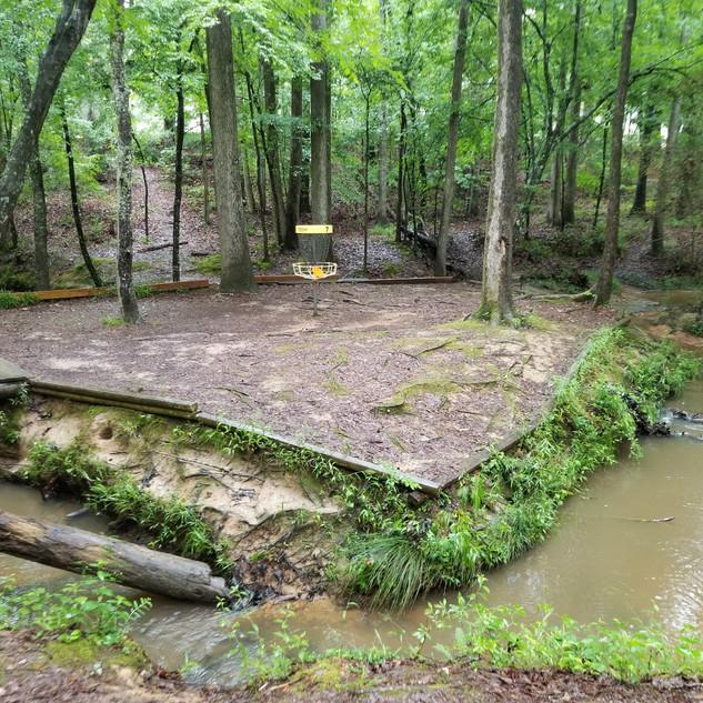 Crooked Creek Hole 7 Basket