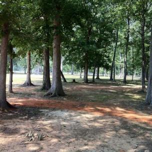 Seven Oaks Hole 1