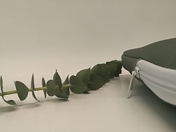 Eucalyptus Sleeve detail