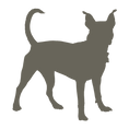 icons_pets_1-01.png