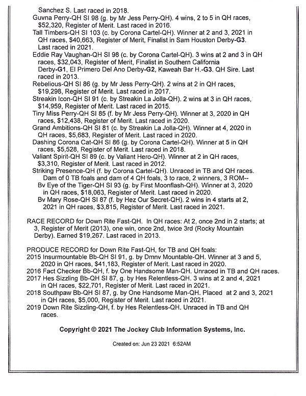 Down Rite 2021 page 4.JPG